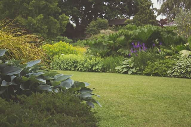 How Your Garden can Improve Home Security