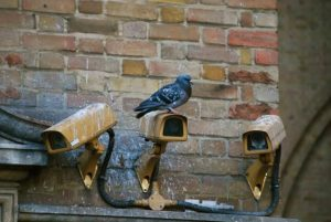 a pigeon sat on top of one of three old security cameras